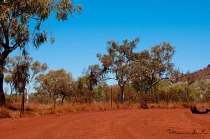 western-australia-4-copy